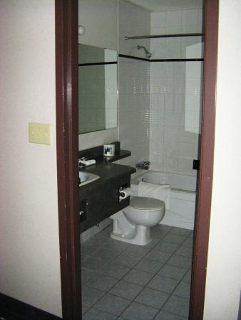 Fireside Inn & Conference Centre: Typical Bathroom