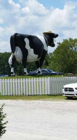 Keller's Flea Market: Big Cow out front facing the road is cute