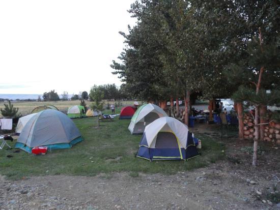 Yakima River RV Park: Tents