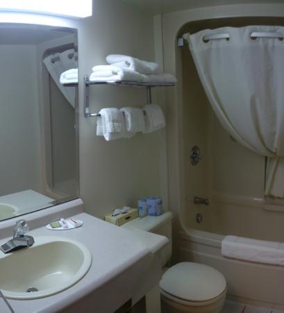 Super 8 North Bay: bathroom