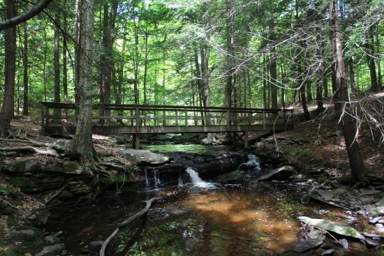 Cove Haven Resort: A beautiful and romantic walking trail