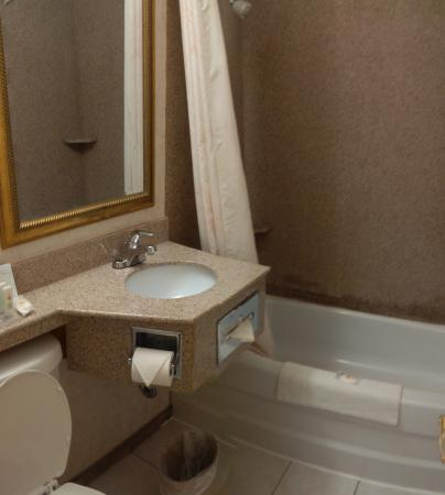 Comfort Inn Toronto Airport: bathroom - not the cleanest