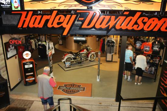 Clare's Harley Davidson at the Falls
