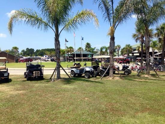 Cajun Palms RV Resort: photo2.jpg
