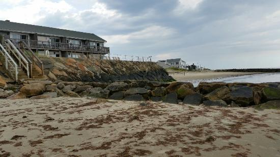 The Garlands: Seaside views