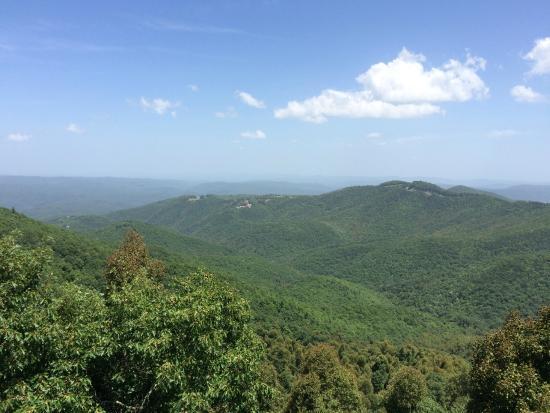 Art of Living Retreat Center : Blue Ridge Mountain view