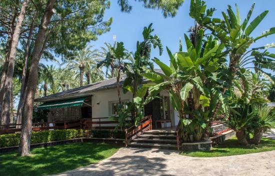 Aceso Jardin De La Casa Del Mar Picture Of El Oasis Villas La