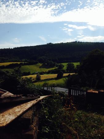Mitcheldean, UK: View