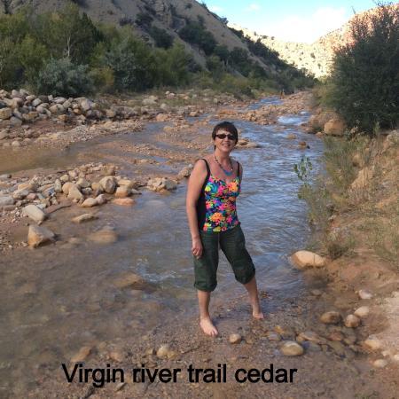 Virgin River Rim Trail