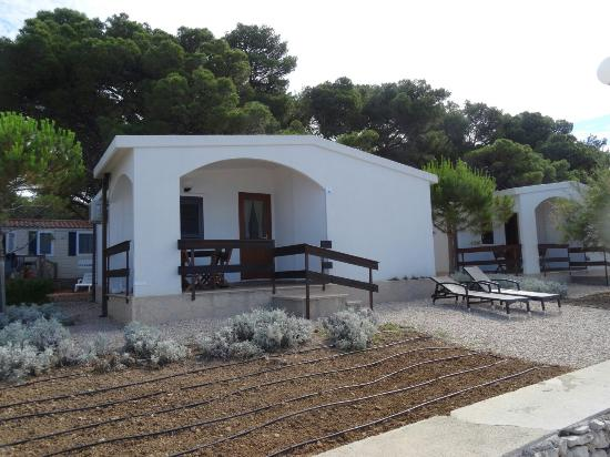 Dalmatian Stars Homes