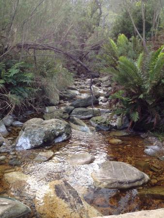 Marloth Nature Reserve: photo0.jpg
