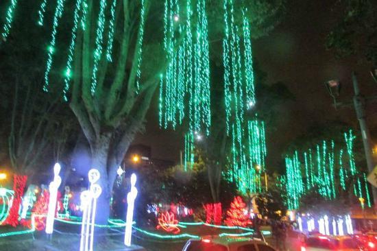 Lluvia de colores  fotografía de Parque de Usaquen 2b4a48d1798