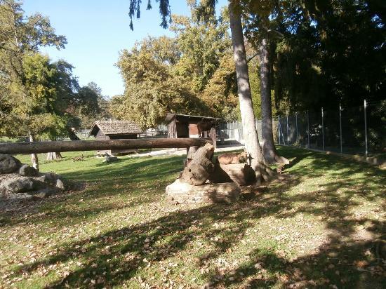 Serre temp r e picture of jardin botanique villa le for Camping le jardin botanique limeray
