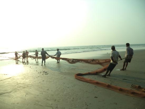 Swami Samarth Beach Resort