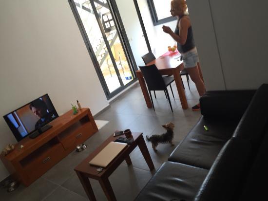 Apartamentos El Carmen : La atención de alejo inmejorable , el ático es espectacular , dos terrazas con vista al mar y al