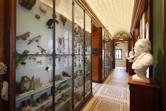 Musée Joseph-Denais