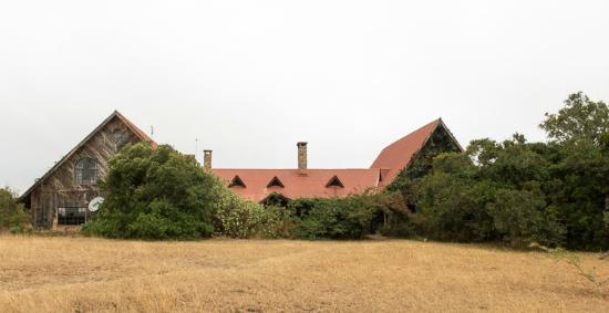 Sandai Homestay & Cottages: Sandai farm