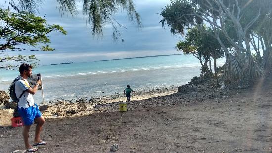 Menai Bay: L'escursione + bella di Zanzibar!