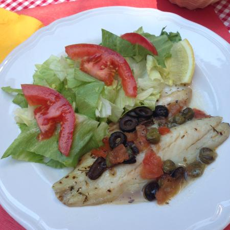 fillet of see bass with mediterranean sauce and salad