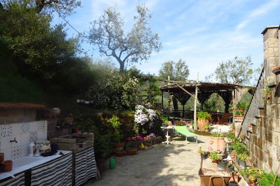 Agriturismo L'Olivara: Beaucoup d'espace autour de la maison
