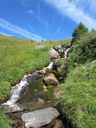 グリンデルワルト, スイス, 谷川を何か所か渡りました。