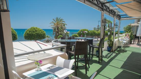 raviolis frais et mojitos photo de le cocorico marbella tripadvisor. Black Bedroom Furniture Sets. Home Design Ideas