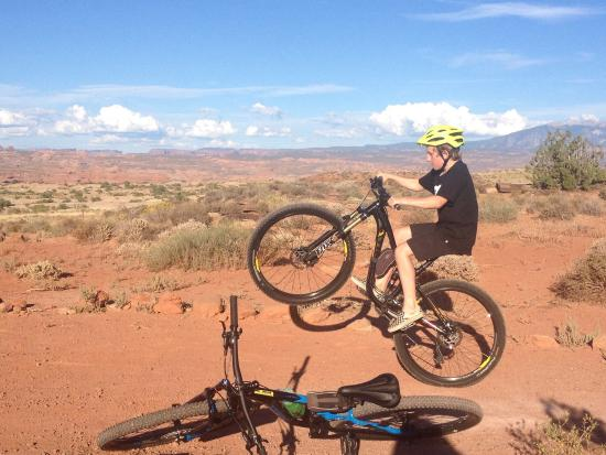 Poison Spider Bicycles Photo