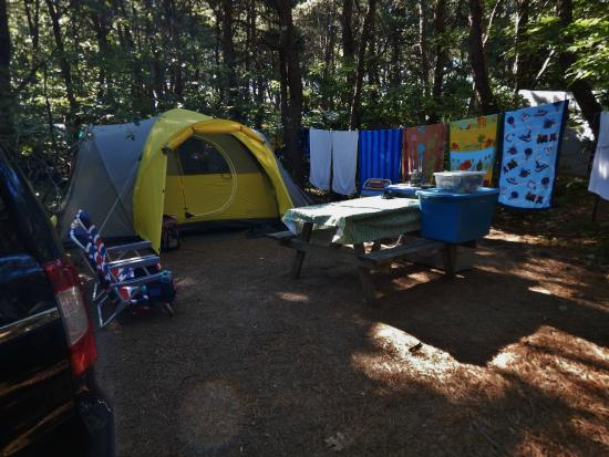 Dunes' Edge Campground: Dunes Edge Campground