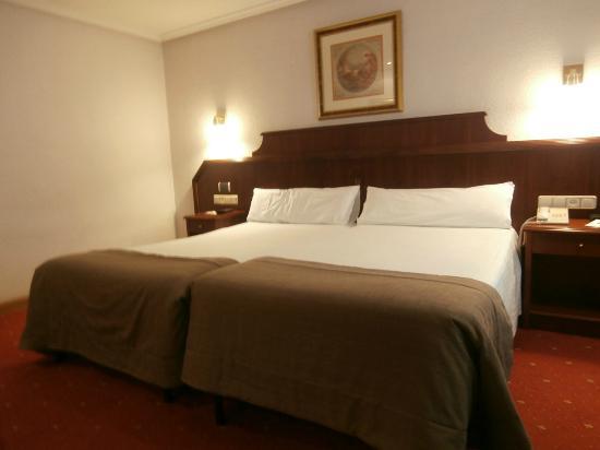 Ayre Hotel Ramiro I: camera