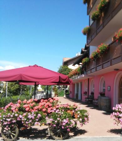 Hotel Rosalpina: Albergo Rosaspina