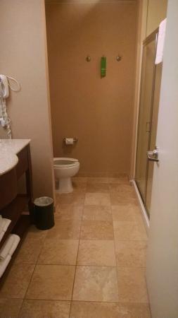 Hampton Inn & Suites Tacoma-Mall: Bathroom