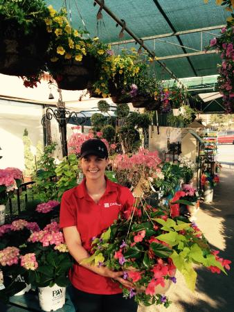 La Rose Garden Center - Picture of La Rose Specialty Foods and Fine Italian Bakery, Milton