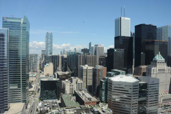 Delta Hotel Toronto Reviews