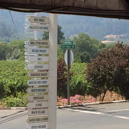 Wine Country Journeys LLC: Our stop for lunch...perfect.