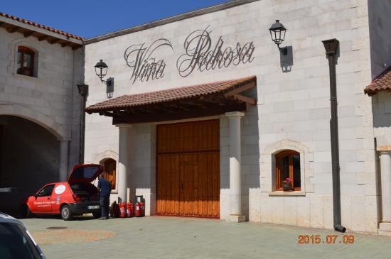 Vintage Spain: Winery