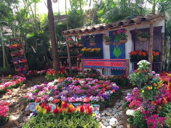 Feria de flores 2015 picture of jardin botanico de for Jardin botanico en sevilla