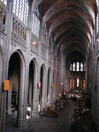 Collégiale Sainte-Waudru - Mons, vue générale