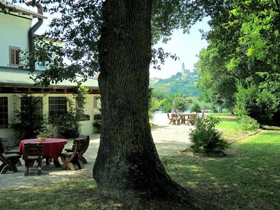 Agriturismo La Coccinella: giatdino