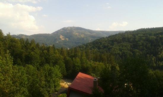 Mandzijowka