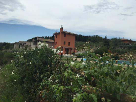 Tenuta Quadrifoglio: View from the pool area to the residences