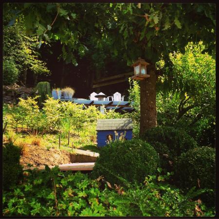 Chez Morel : The heavenly garden