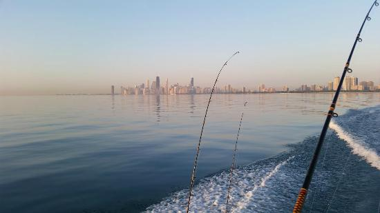 Skyline fishing charters chicago il opinie tripadvisor for Chicago fishing charters