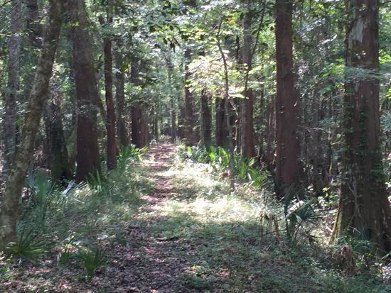 LeConte-Woodmanston Plantation and Botanical Gardens