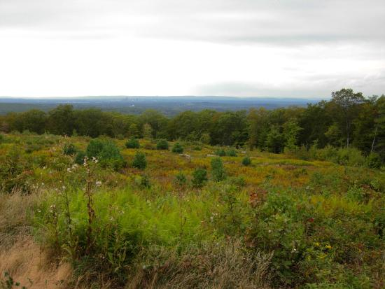 Case Mountain: View along the trail