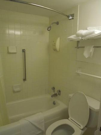 Americas Best Value Inn-Norfolk Airport Area: Bathroom