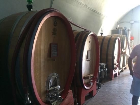 Castello di Potentino: Views of the Castle's Wine producing Cantina