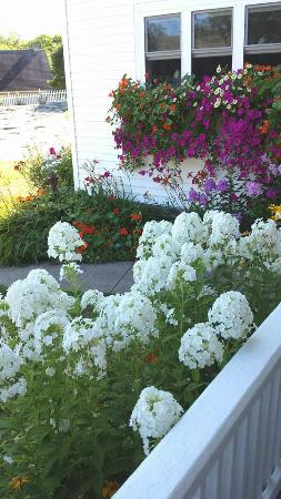 Bittersweet B & B: Abundant flowers surround the inn and its porches.