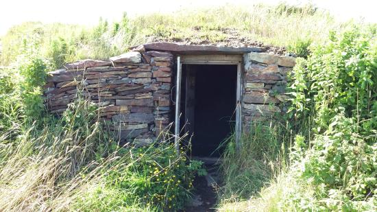 ‪Elliston's Root Cellars‬