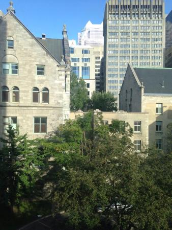 McGill Student Apartments: photo7.jpg