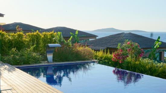 The Bodrum by Paramount Hotels & Resorts: Pool at the Villa